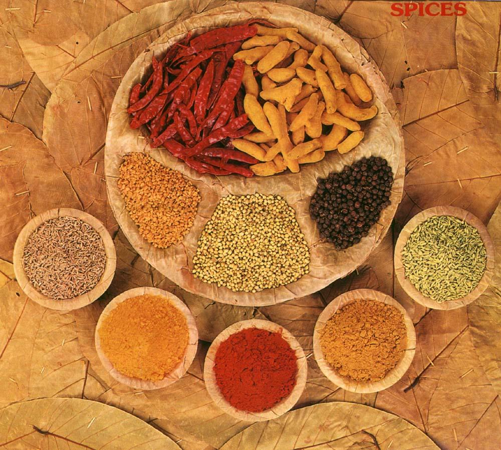 South Indian Food Sugar Land
